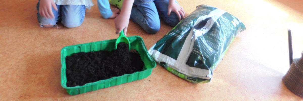 Gurken pflanzen 2021 - Kindergarten Ameke